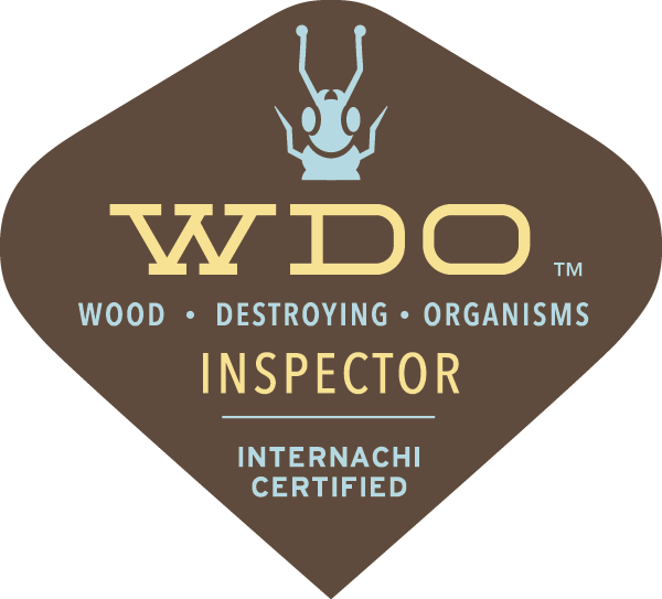 WDI Termite Inspection Gulf Coast